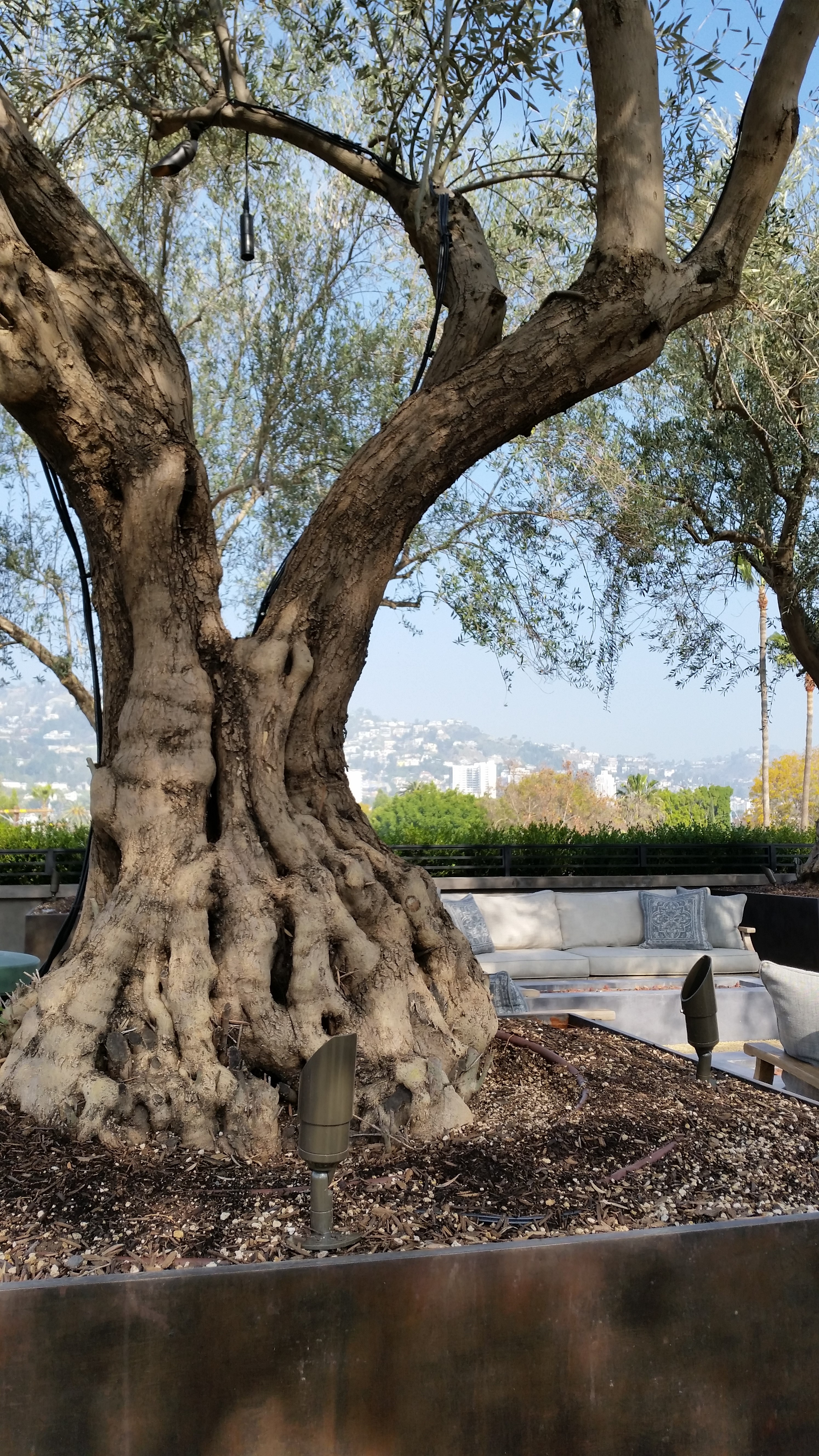 Restoration Hardware – West Hollywood